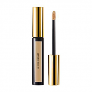 Encre de Peau All Hours Concealer